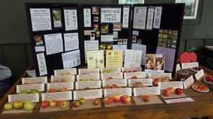 BC Fruit Testers Apple Display at Art's Nursery September 19